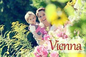 Vacation Photographer Vienna Button