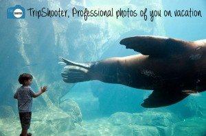 TripShooter Vacation Photographer postcard boy with seal in Seward Alaska