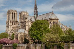 Amazing photos of Notre Dame Cathedral in springtime Paris