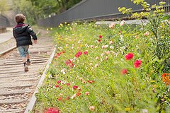 Photo of little boy running along train tracks by Paris photographer Jade Maitre