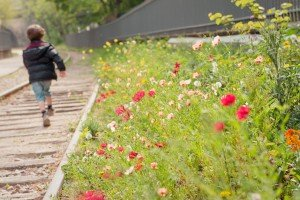 Boy running in railway tracks and flowers, by Paris photographer Jade Maitre