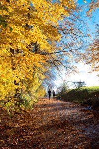 Vacation photo of family in Zurich by TripShooter's Zurich photographer Cloudia Chen